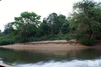 Kwai river banks