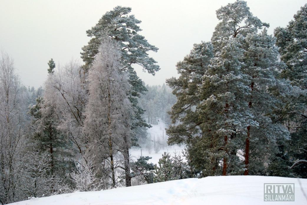 Winter 2012 -12