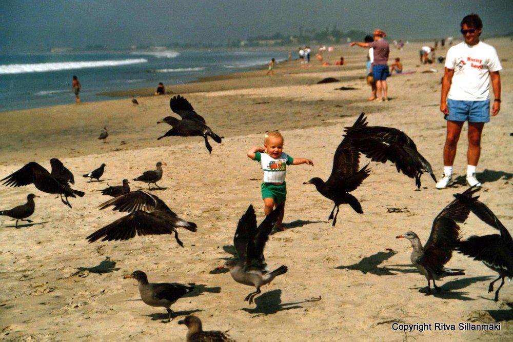 07-birds 008