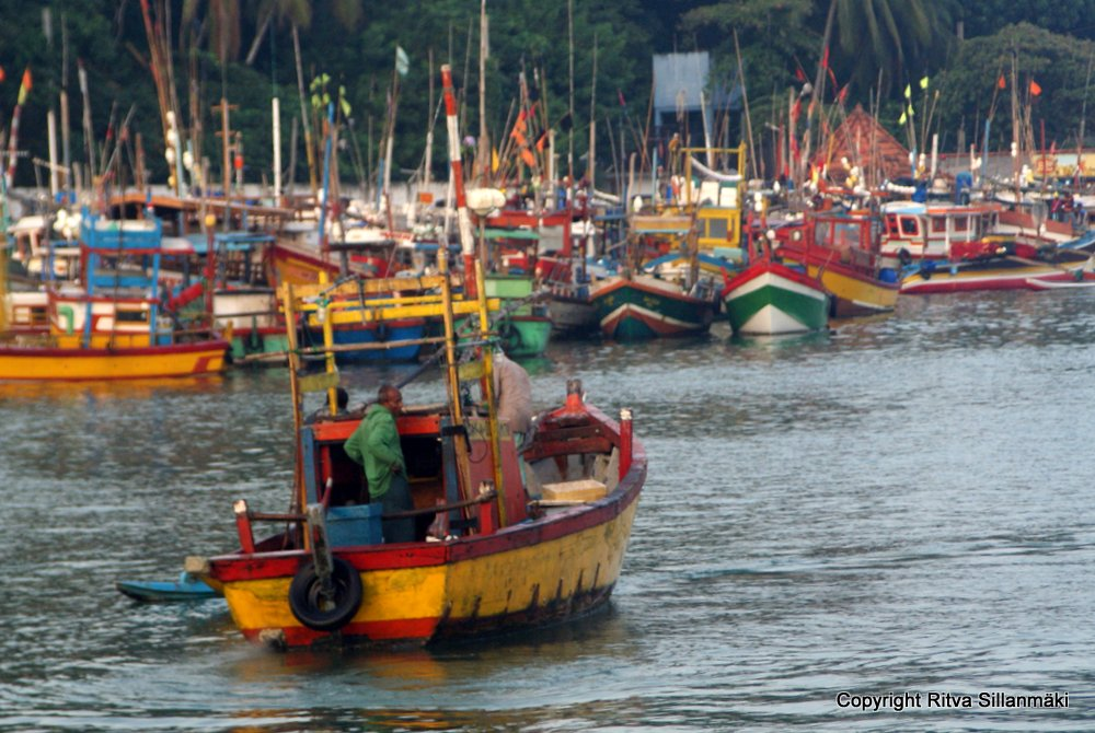 Colorful fishing boats in Sri Lanka