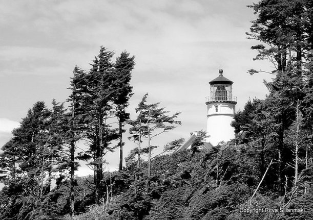 2-Oregon coastline - one lighthouse and an other-125