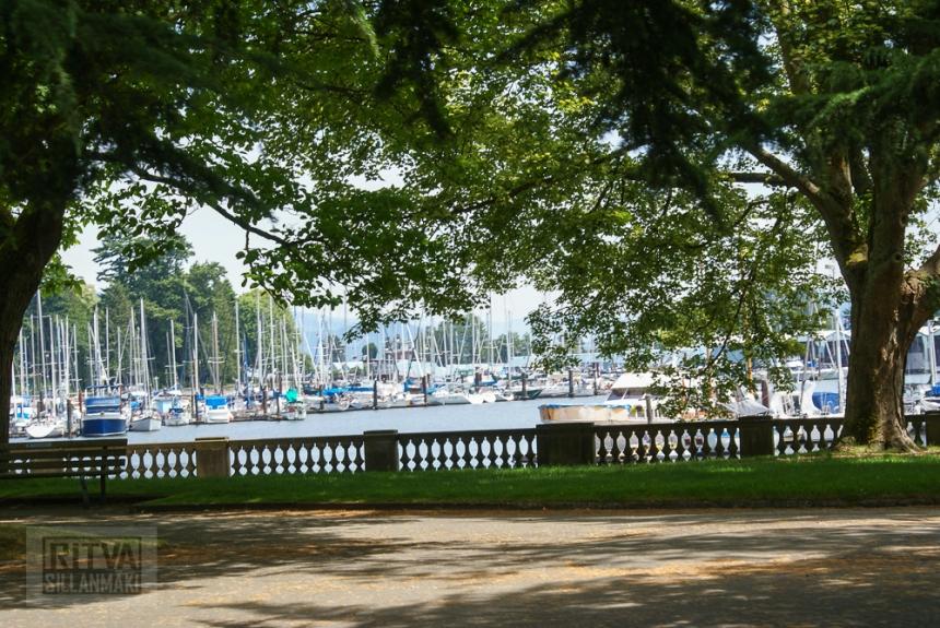 Vancouver, Stanley park-147