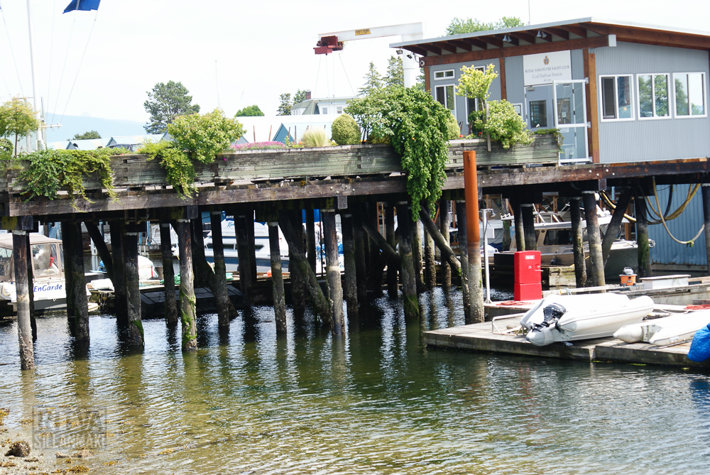 Vancouver, Stanley park-153