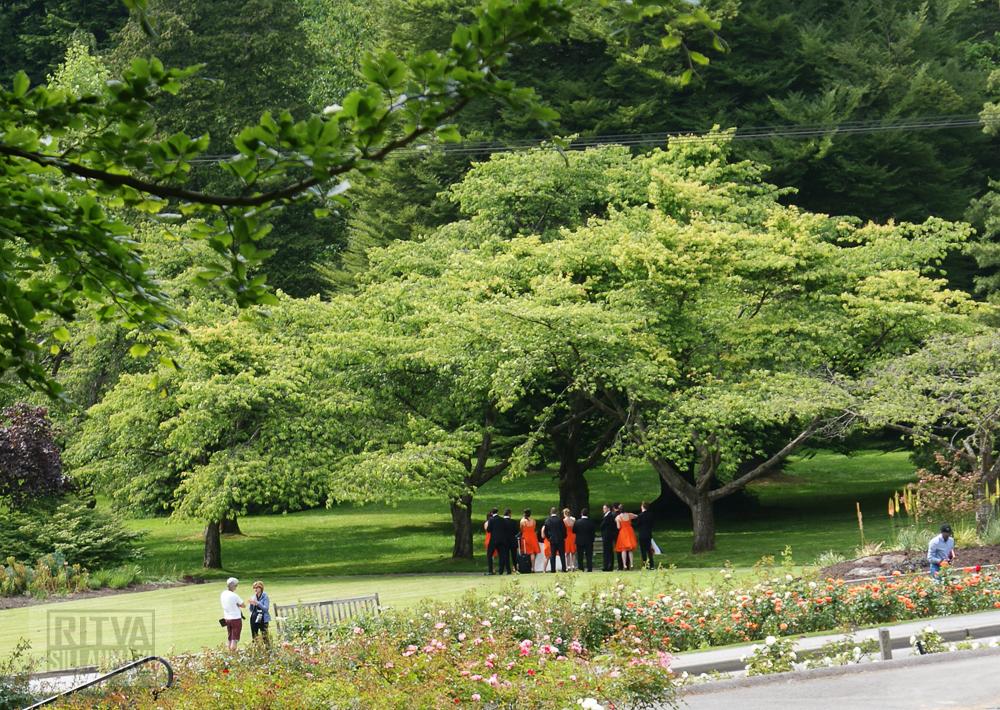 Vancouver, Stanley park-294