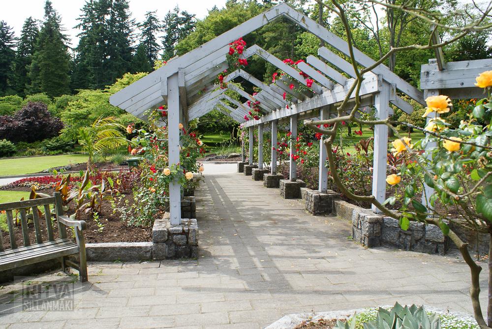 Vancouver, Stanley park-323
