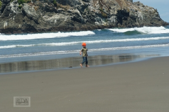 Oregon coastline - beaches-138