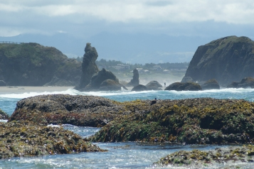 Oregon coastline - beaches-152