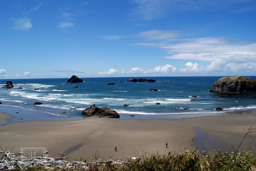 Oregon coastline - beaches-39