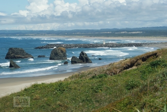 Oregon coastline - beaches-70
