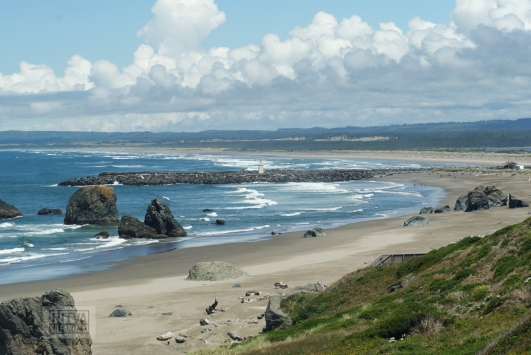 Oregon coastline - beaches-86