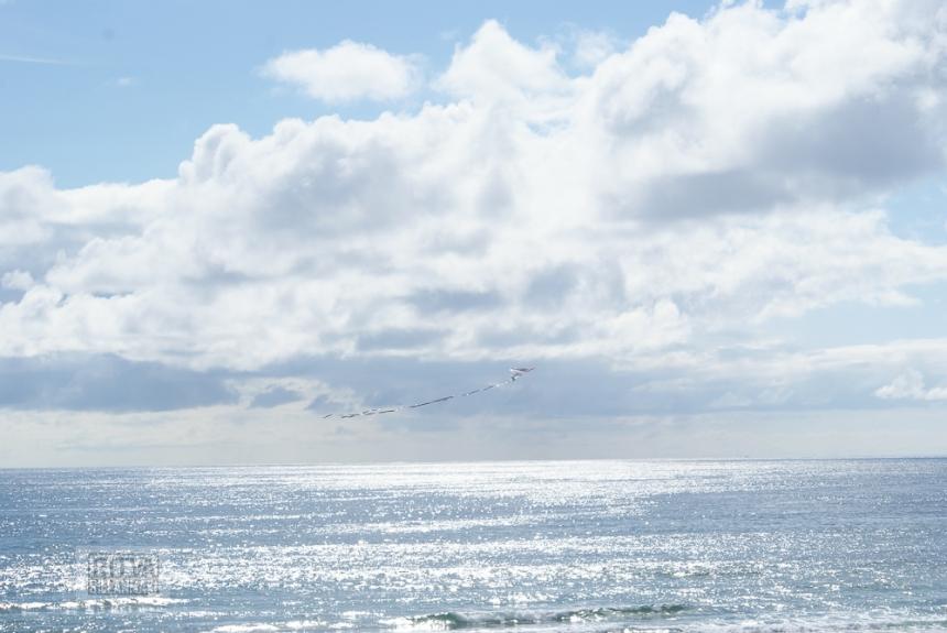 Oregon coastline - one lighthouse-101