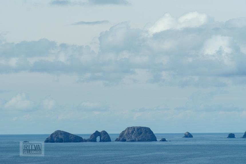 Oregon coastline - one lighthouse-71