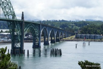 10-Oregon coastline -