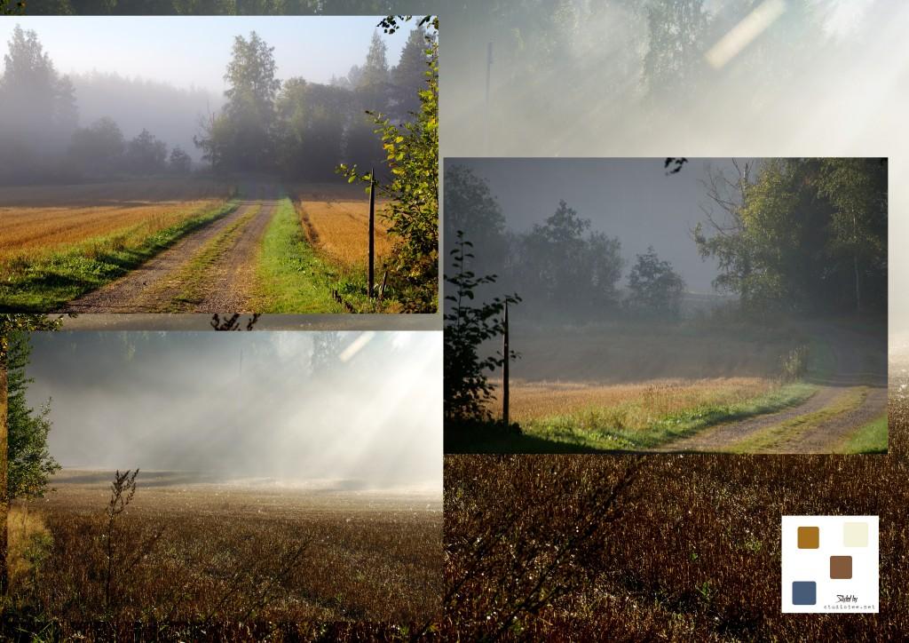 2013-09-07 morning mist