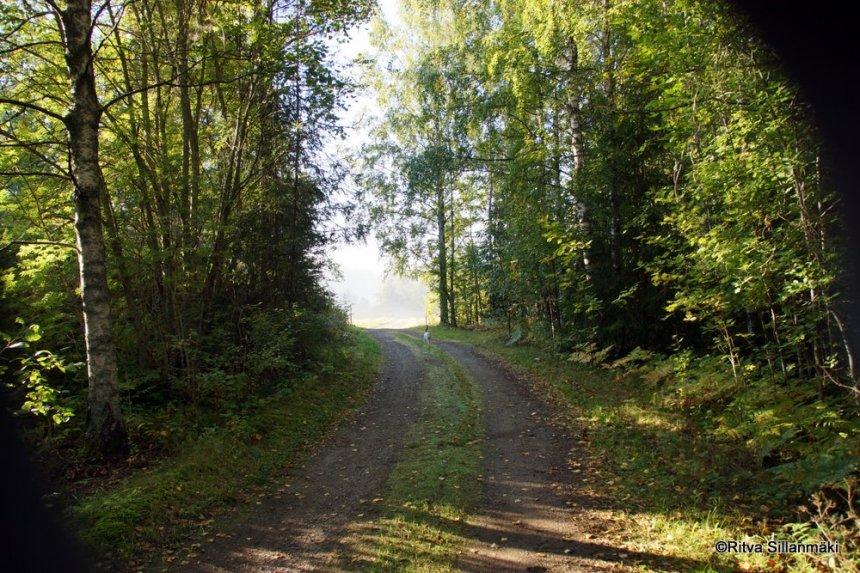 green path road