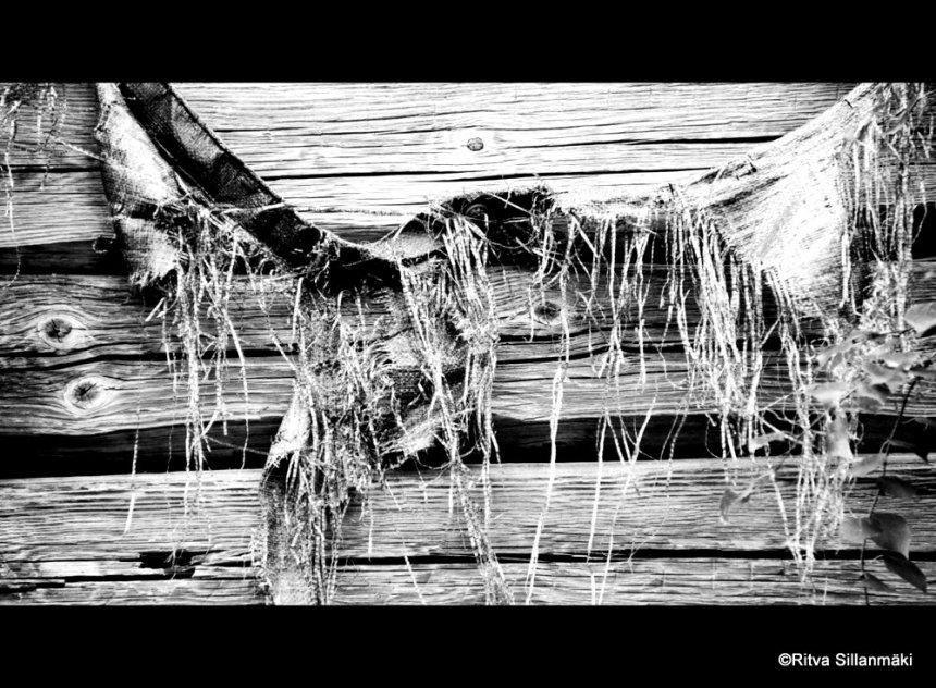 Old barn (2)