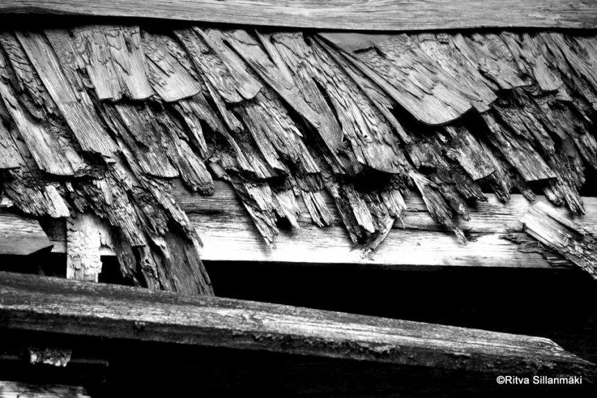 Old barn (5)