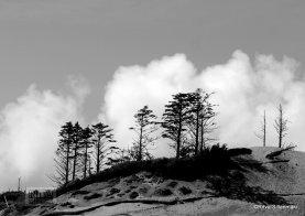 08-Oregon coastline - one lighthouse-37