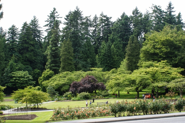 Vancouver, Stanley park-313