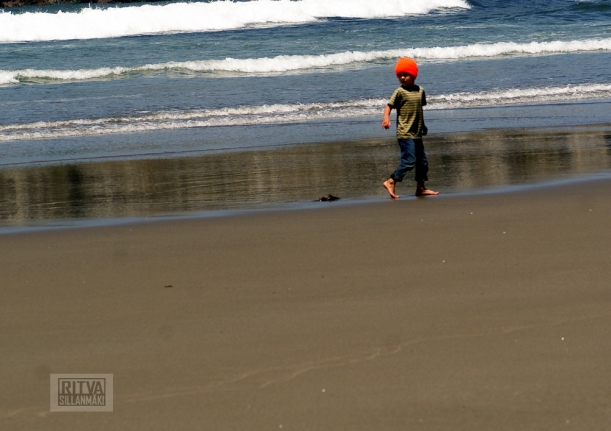 Oregon coastline - beaches-137