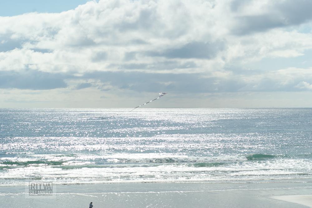 Oregon coastline - one lighthouse-87
