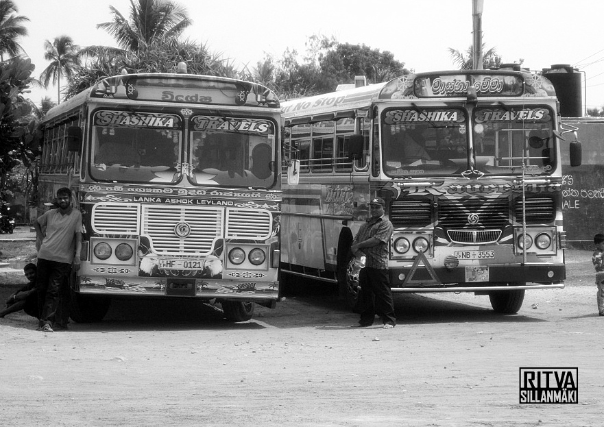 Sri Lanka buses