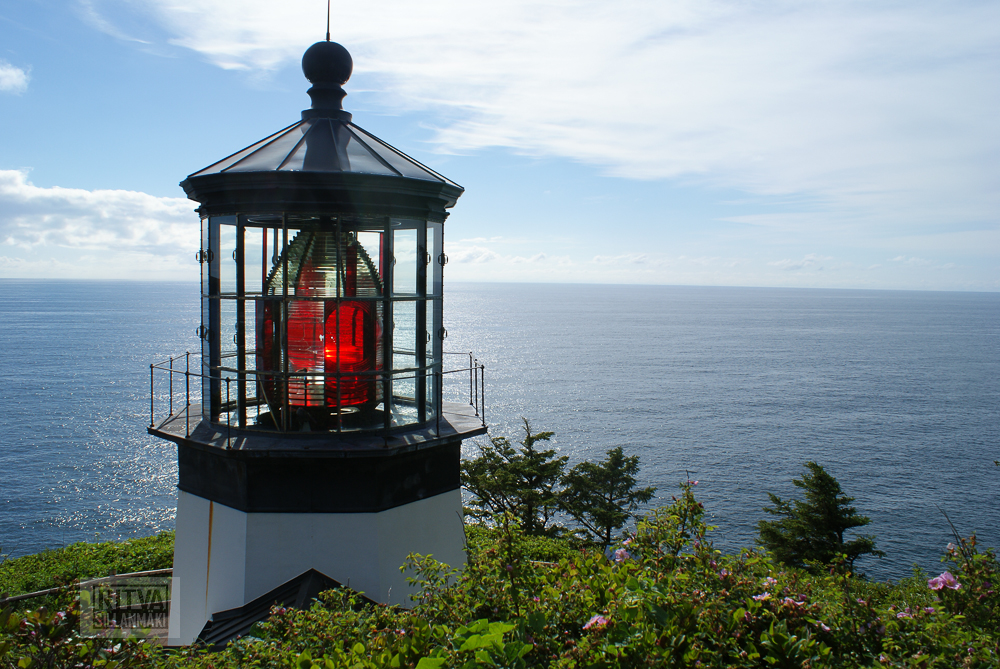 Oregon coastline - one lighthouse-109