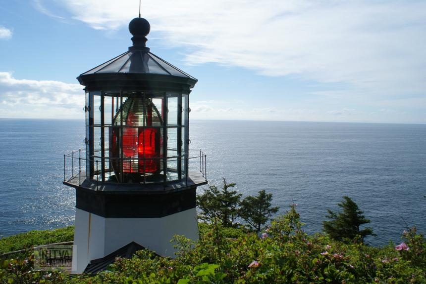 Oregon coastline - one lighthouse-109