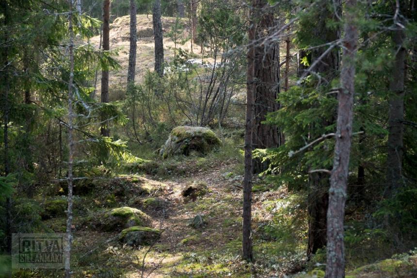 Ritva Sillanmäki (21 of 120)