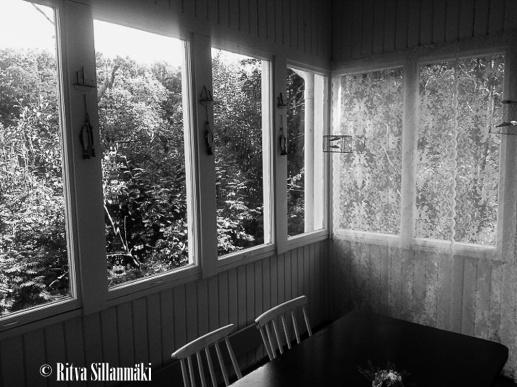 vasikkasaari-4