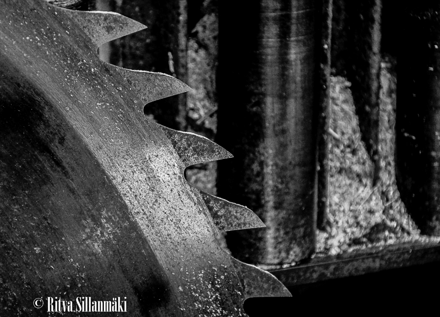 RS 2014-06-09 fieldsaw  bw-2