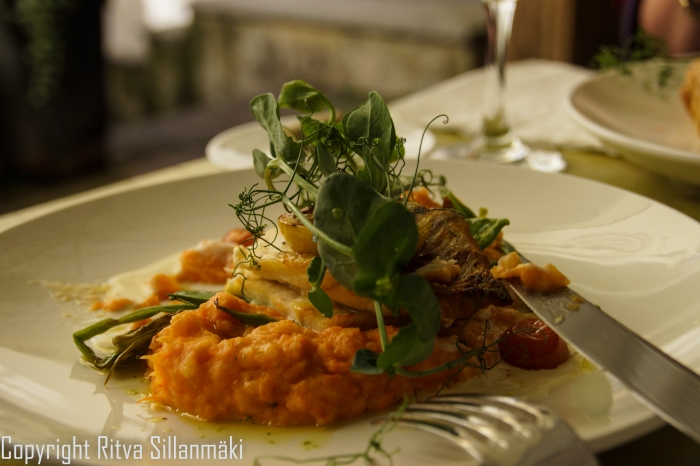 RS 2014-0611 - Tallin-delicious lunc