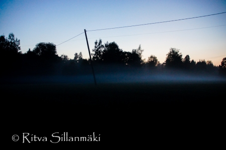 fog (24 of 75)