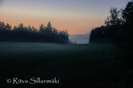 fog (71 of 75)