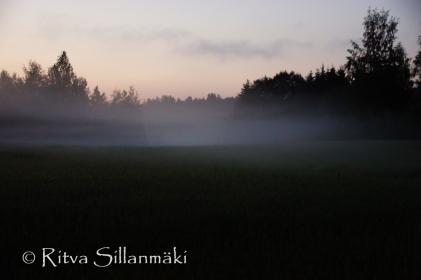 fog (8 of 75)
