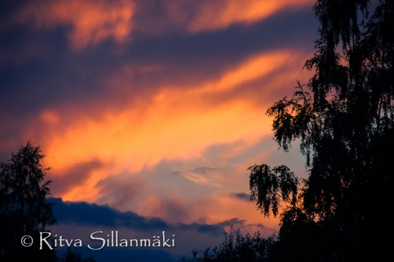 fog- Ritva Sillanmäki (16 of 45)