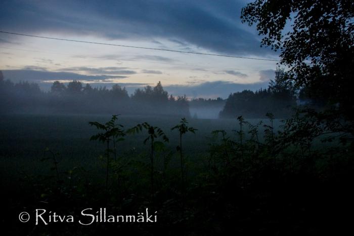 fog- Ritva Sillanmäki (27 of 45)