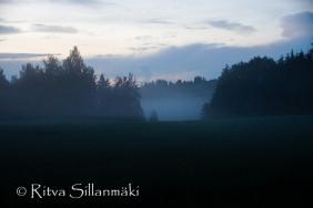 fog- Ritva Sillanmäki (28 of 45)