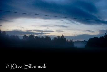 fog- Ritva Sillanmäki (29 of 45)