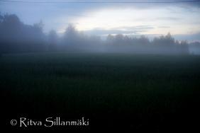 fog- Ritva Sillanmäki (30 of 45)