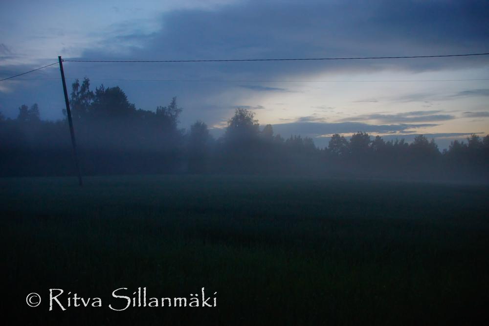 fog- Ritva Sillanmäki (34 of 45)