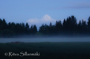 fog- Ritva Sillanmäki (36 of 45)