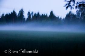 fog- Ritva Sillanmäki (39 of 45)