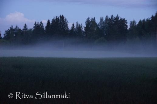 fog- Ritva Sillanmäki (42 of 45)