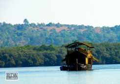 Goa India, Chapora River (11)