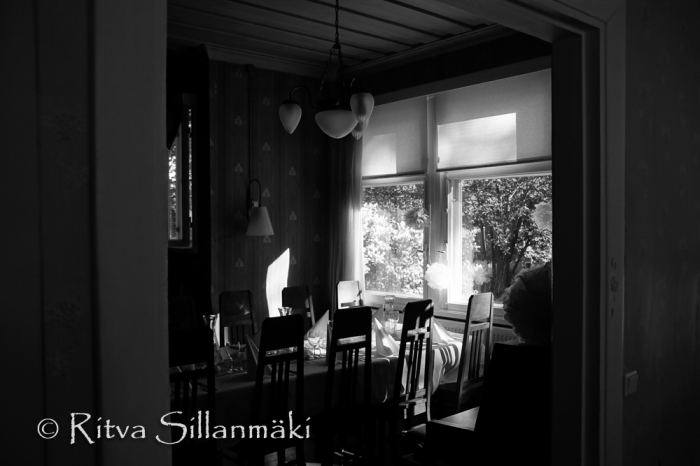 Parkvilla- Ritva Sillanmäki (3 of 5)