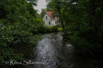 vääksy- Ritva Sillanmäki (3 of 75)