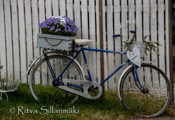 vääksy- Ritva Sillanmäki (31 of 75)
