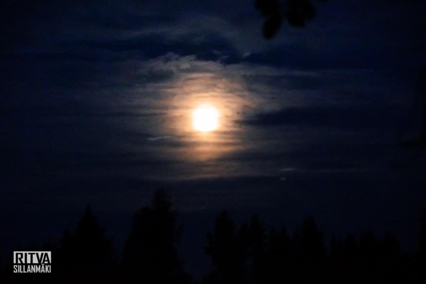 harvest moon (1 of 5)