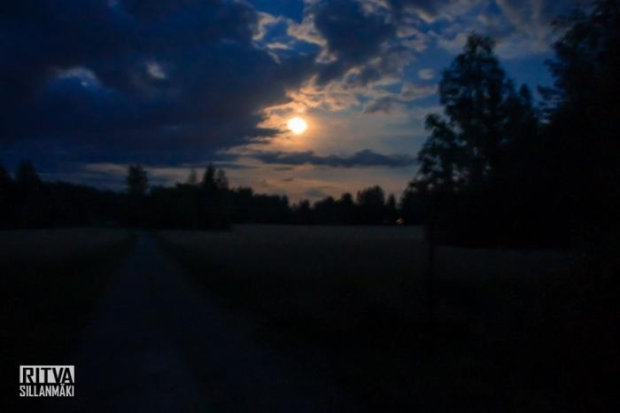 harvest moon (11 of 13)